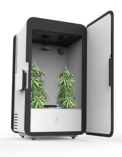 Leaf Cannabis Growing System at werd.com