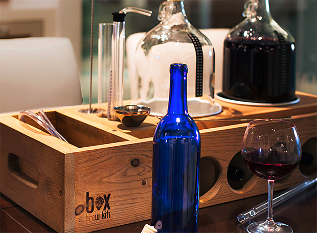 Handcrafted 1 Gallon Winemaking Kit at werd.com