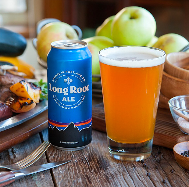 Patagonia Long Root Ale at werd.com