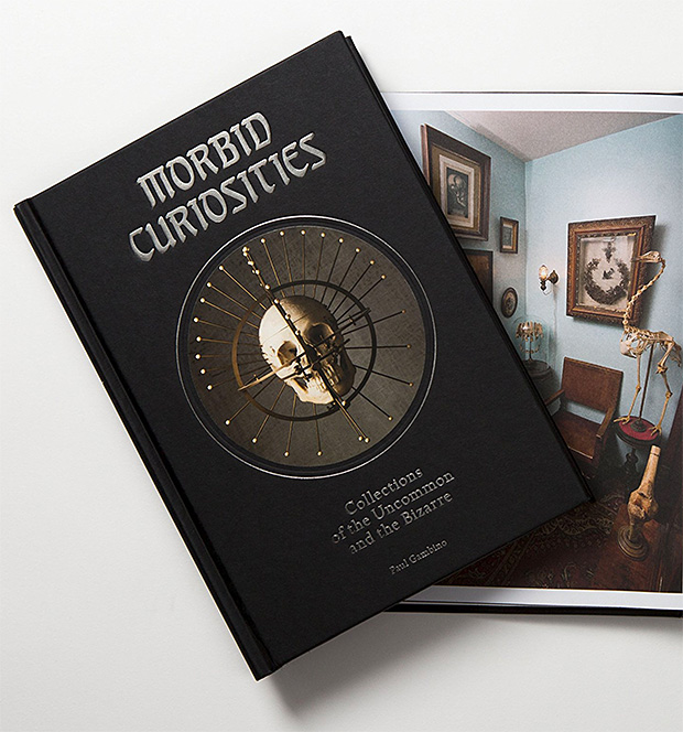 Morbid Curiosities: Collections of the Uncommon and the Bizarre at werd.com