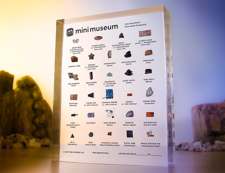 Your Mini Museum Puts Dinosaur Bones & Steve Jobs' Turtleneck On Display at werd.com