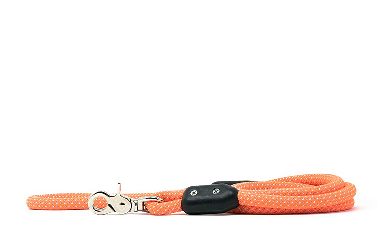 This Leash Was Designed To Last a Lifetime at werd.com