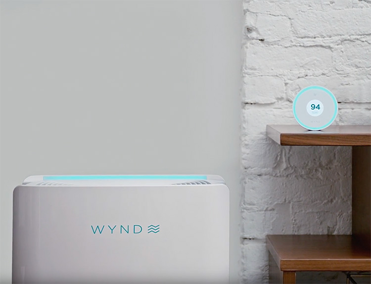 Breathe Easy with the Wynd Halo + Home Purifier at werd.com
