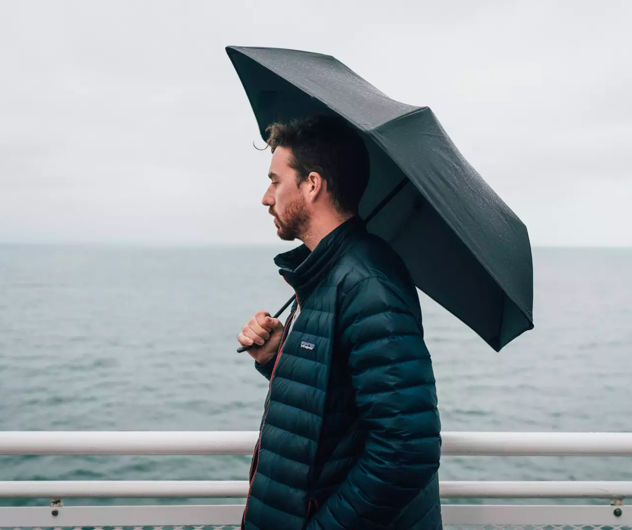 This Windproof Umbrella Blows Away the Competition at werd.com