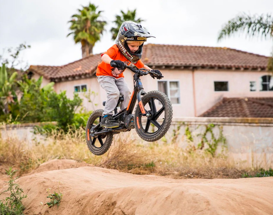 Harley Davidson Introduces Electric Bikes for Tykes at werd.com