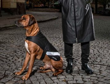These Dog Raincoats Give Your Best Friend Shelter from the Storm