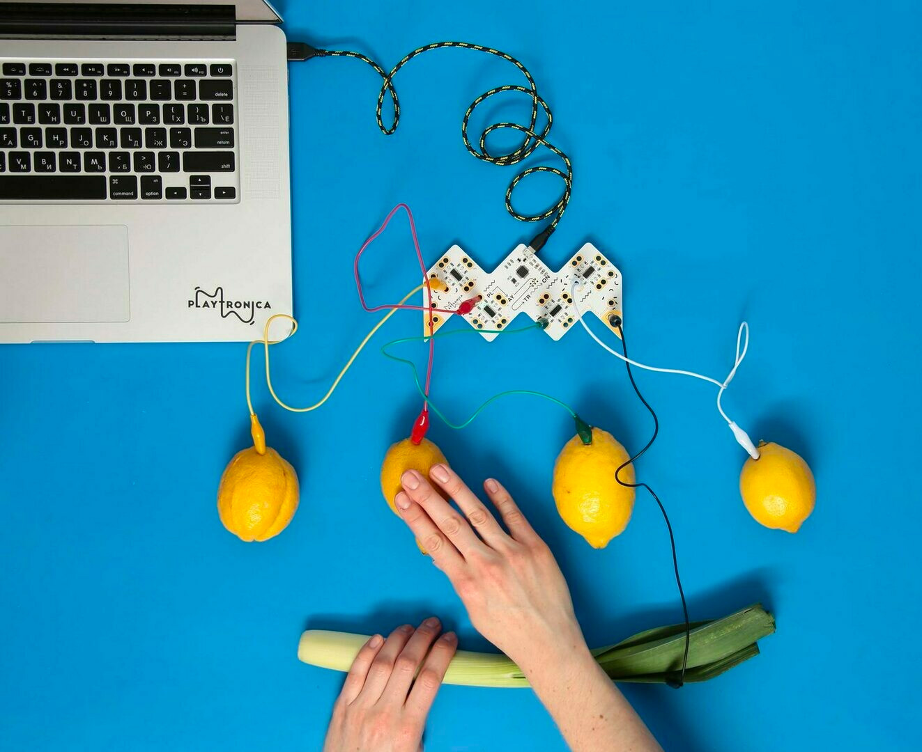 Playtronica Wants You To Make Music with Everyday Objects at werd.com