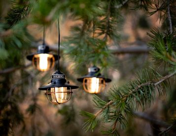 These LED Edison Lights Add Light & Ambiance Anywhere