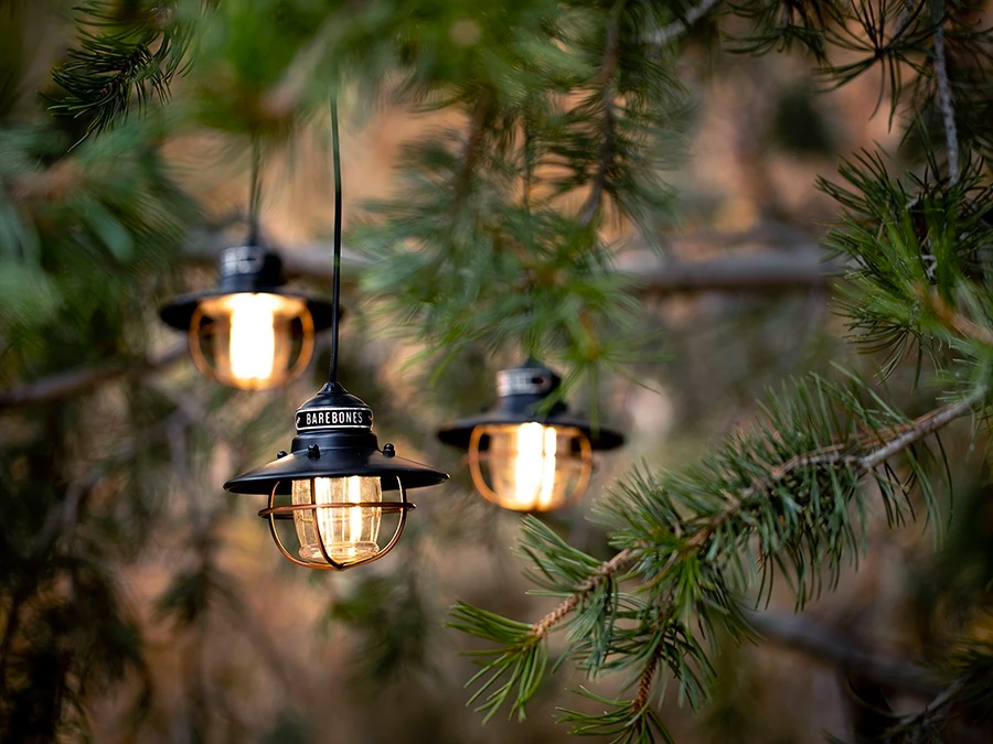 These LED Edison Lights Add Light & Ambiance Anywhere at werd.com