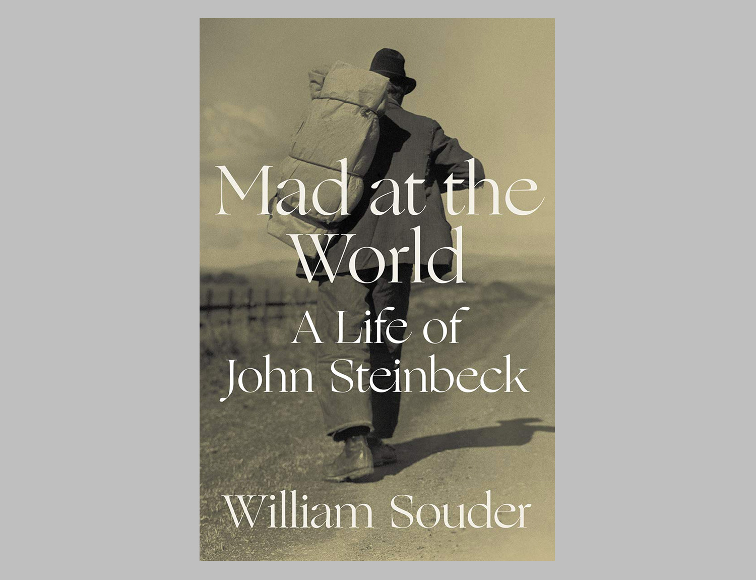 Mad at the World: A Life of John Steinbeck at werd.com