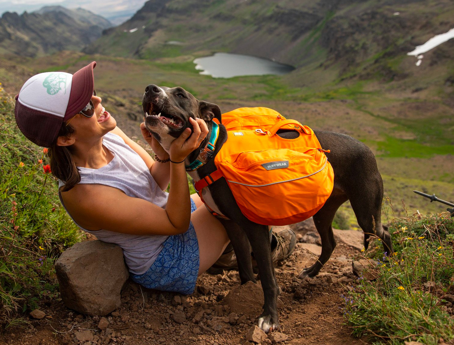 Equip Your Pup To Hike Like A Pro at werd.com