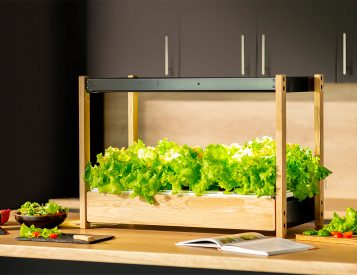 Grow an Edible Garden Indoors with the Click & Grow 25