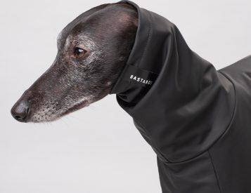 Keep Your Doggo Dry with Bastards All-Weather Wear