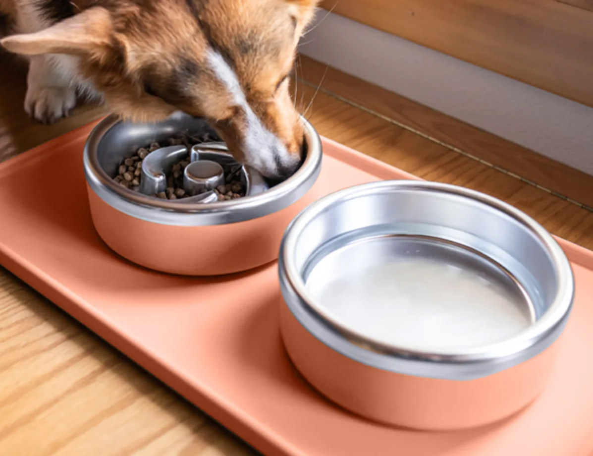 Slow Your Dog Down with the Trot Puzzle Feeder at werd.com